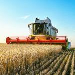 Landwirtschaft und Energiegewinnung