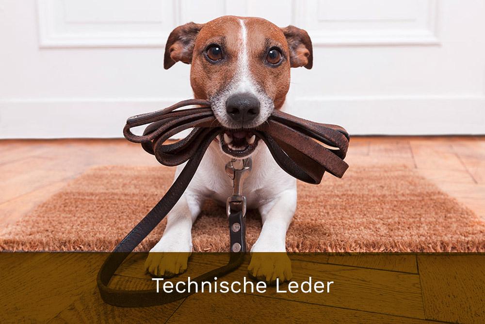 Technische Leder